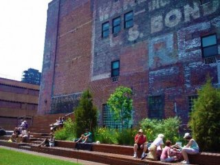 High Line Picnics